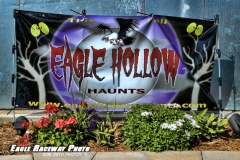 eagle-09-04-11-230-web